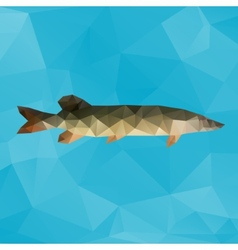 Polygon pike vector