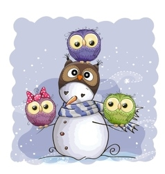 Snowman and Owls vector image vector image
