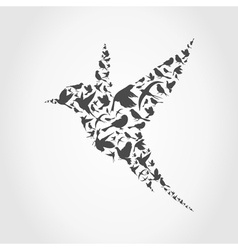 Birdie9 vector image