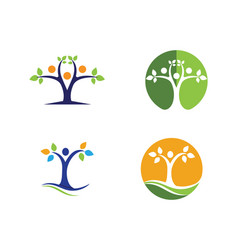family tree logo template icon design vector image