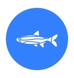 Neon fish icon black singe aquarium fish icon vector