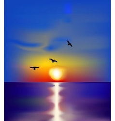 Sunset on sea with birds vector