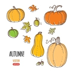 autumn harvest template vector image vector image