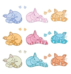 Sleeping cats vector image