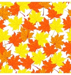 Maple leaves Autumn and bright background vector image
