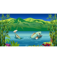 A big fish at the lake vector image vector image