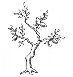 vintage lemon tree vector image vector image