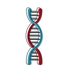 Dna molecule structure science genetic structure vector