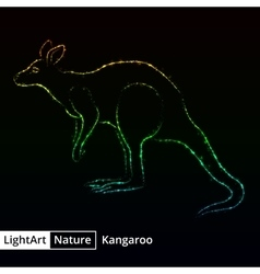 Kangaroo silhouette of lights on black background vector image vector image