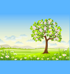 spring landscape with flowering tree and flowers vector image vector image