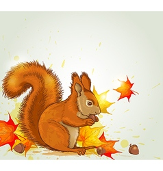 Autumn background with red fluffy squirrel vector image