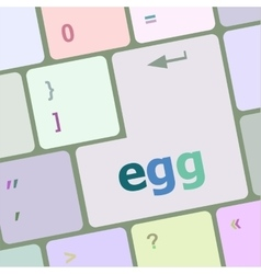 Egg word on computer pc keyboard key vector