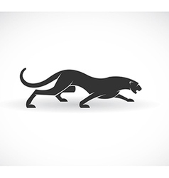 Panther vector image