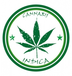 cannabis stamp vector image