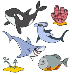 Marine predatory fish vector