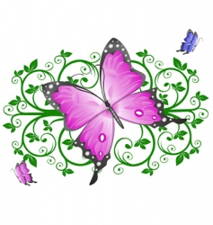 butterfly floral vector image vector image