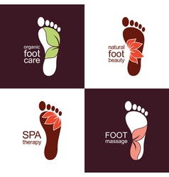 Feet with leaves and flowers vector