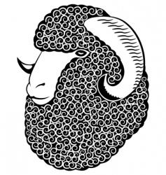 Portrait of a merino sheep vector