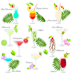 Set of popular summer cocktails isolated on white vector