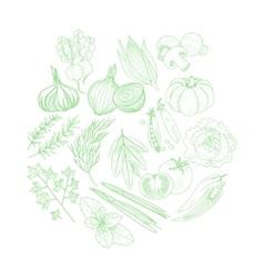 Set Of Vegetables Hand Drawn Artistic Sketch vector image