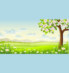 spring panorama landscape with flowering tree and vector image vector image