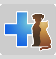 veterinary cross on grey background vector image vector image