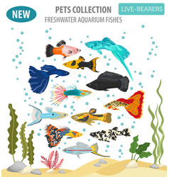 Freshwater fishes breeds icon set flat style vector