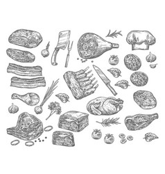 Sketch icons of meat for butchery shop vector