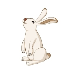 Rabbit cute hare bunny isolated vector