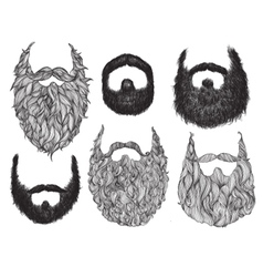 Hand drawn beard set vector