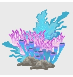 Bouquet of blue and pink coral underwater set vector
