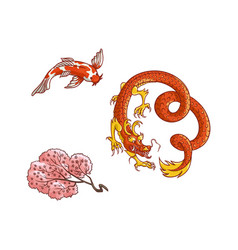 Sakura branch blooming dragon koi carp set vector