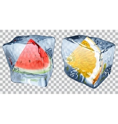 Transparent ice cubes with watermelon and orange vector