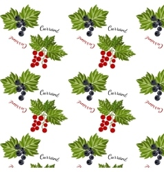 Currants seamless pattern vector