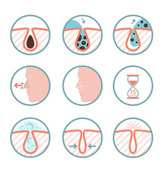facial treatments icons treatment of skin vector image