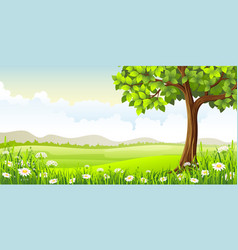 summer panorama landscape with tree and flowers vector image