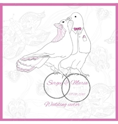 Wedding element of kissing doves vector image