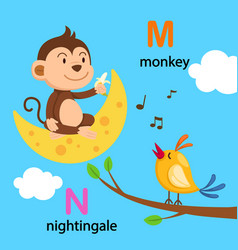 isolated alphabet letter m-moon n-nightingale vector image