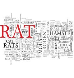 rats word cloud concept vector image vector image