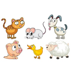 Six different kinds of animals vector image vector image