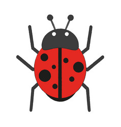 cute ladybug cartoon vector image