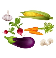 Vegetables realistic set vector image