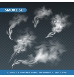 Delicate white cigarette smoke waves on vector image