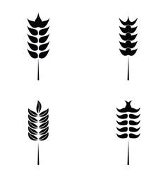 Cereals icon set with rice wheat vector