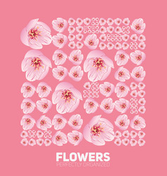 Cherry blossom flowers organized perfectly vector