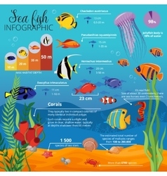 Sea Life Animals Plants Infographic vector image