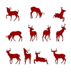 Various silhouettes of deer vector