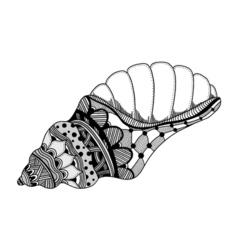 Hand Drawn sea shell vector image vector image