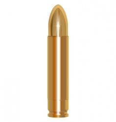 golden bullet vector image