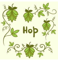 Stylized hops set vector